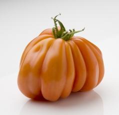 coeur-de-boeuf-tomaat